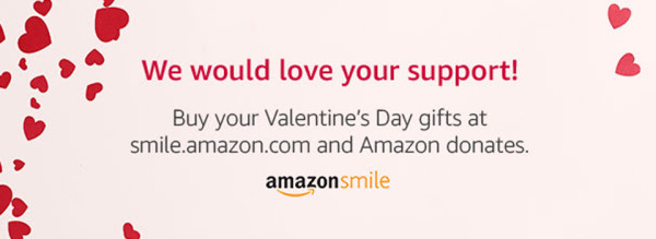 Amazon Smile - Valentine's Web Banner No Text